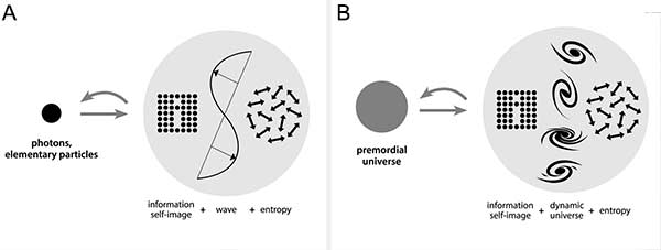Time arrow in nature:  logical key to an information based universe