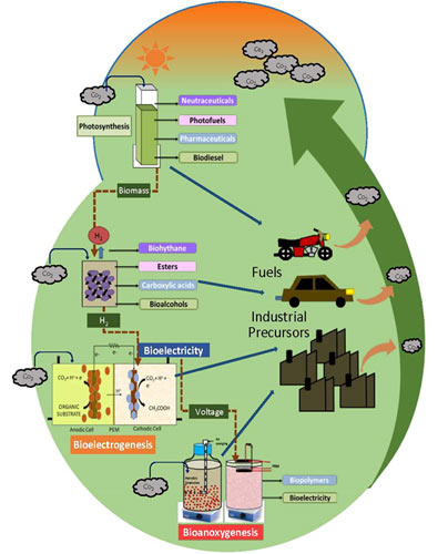 Rise of the gaseous (carbon dioxide) feedstock in circular bioeconomy