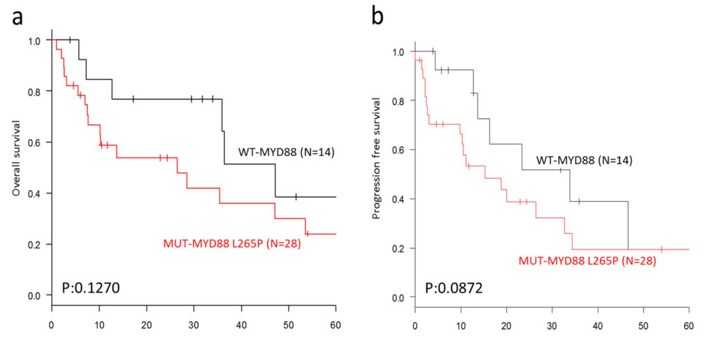 Prognostic impact of MYD88 L265P mutation in PCNSL (univariate analysis)