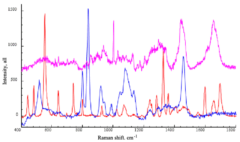 Molecular information (Raman spectra) of porcine skin (purple line), caffeine (red line) and propylene glycol (blue line). Excitation wavelength: 633nm