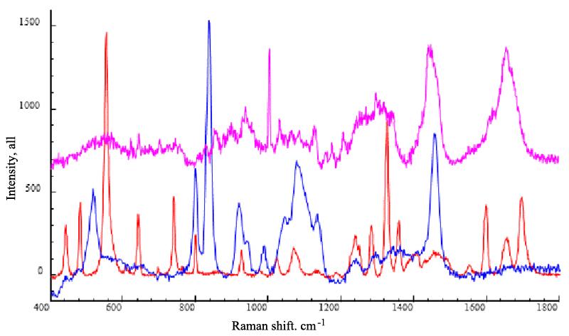 Molecular information (Raman spectra) of porcine skin (purple line), caffeine (red line) and propylene glycol (blue line). Excitation wavelength: 633nm