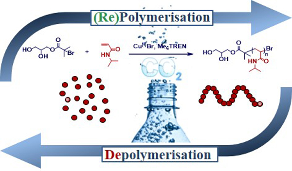 A scientific overview of the polymerisation and depolymerisation process