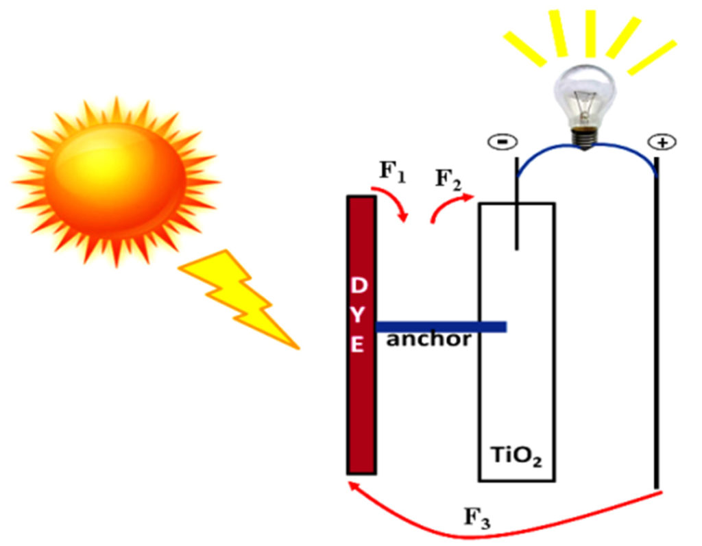 sensitized solar cells