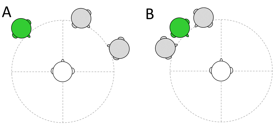Schematic of different location advantage