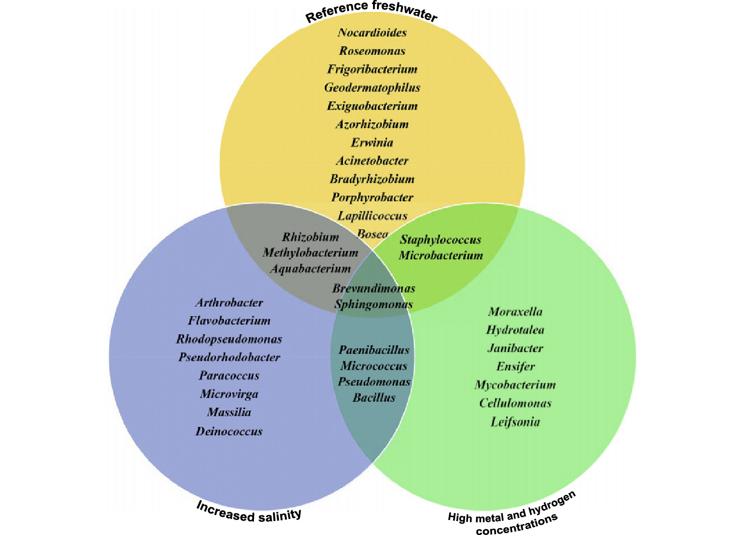 Can environmental factors influence amphibians skin bacterial venn diagram showing the bacterial genera unique andor shared between frog populations the core bacterial genera included brevundimonas and sphingomonas pooptronica Gallery
