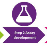 Steps in biomarker development process