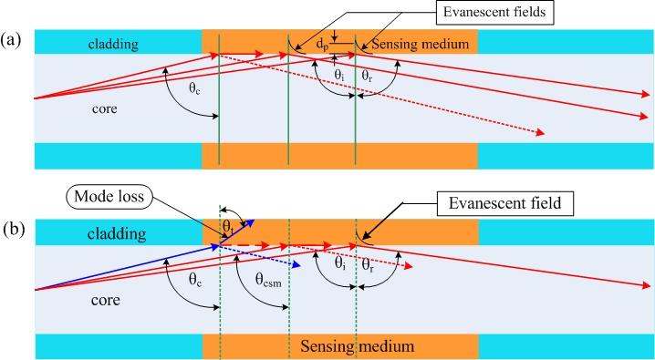 Sensing mechanisms in MMF refractometer