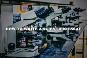 How to successfully write a scientific essay