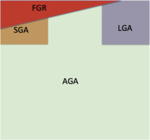 sentation of the possible overlap between FGR and SGA and between AGA and LGA