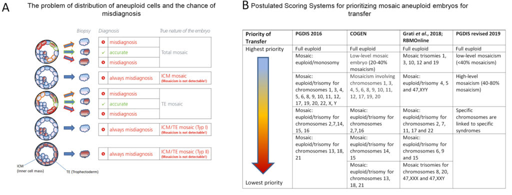 The pitfalls of PGT-A and scoring of mosaic embryos