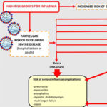 Fig. 1. High-risk groups for influenza and flu–related complications