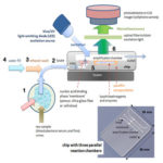 Simplified Molecular Diagnostics on a Chip for Point-of-Care Diagnostics