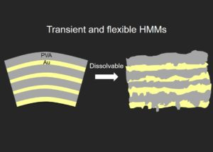 Proof of concept design of transient and flexible HMMs.