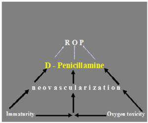 Proposal mechanisms of action of D-PA in the prevention of ROP