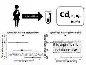 metals in pregnant women. Atlas of Science