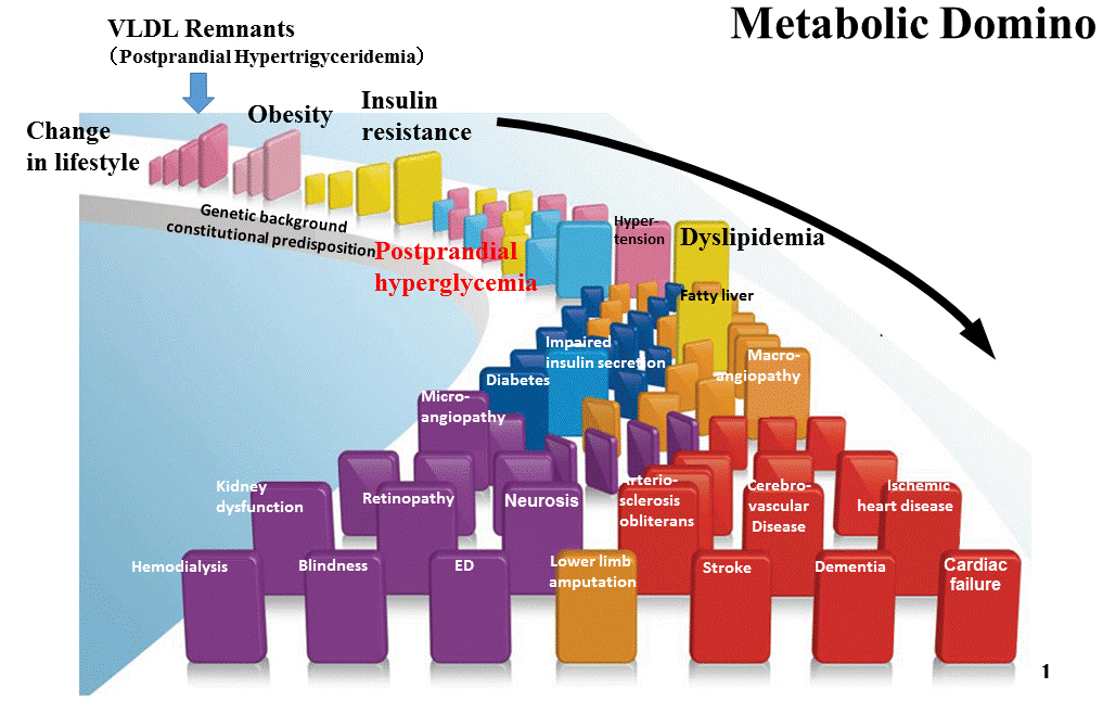 The flow of metabolic domino. Atlas of Science