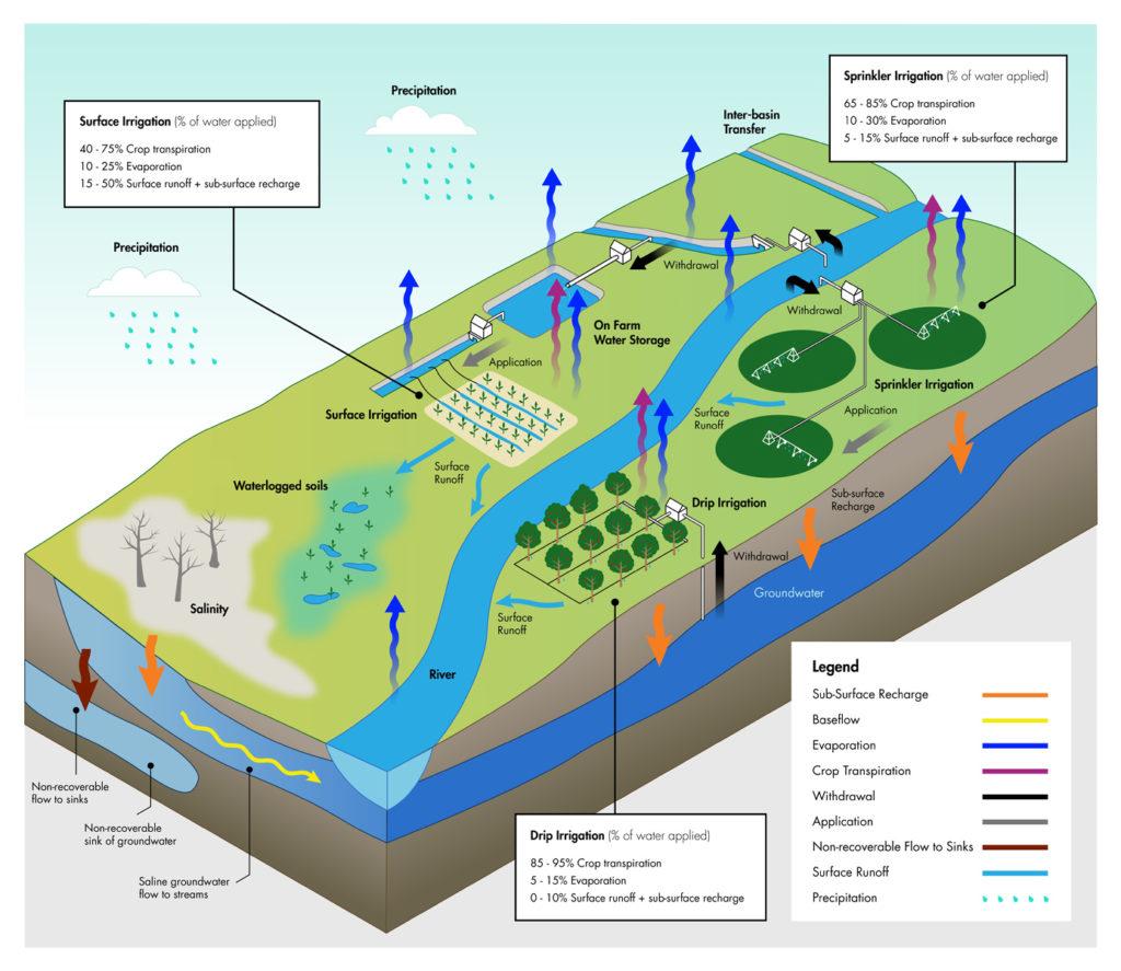 The paradox of irrigation efficiency. Atlas of Science