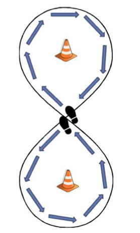 Figure of 8 Walk test set up. Arrows indicate direction of walking pattern. Atlas of Science