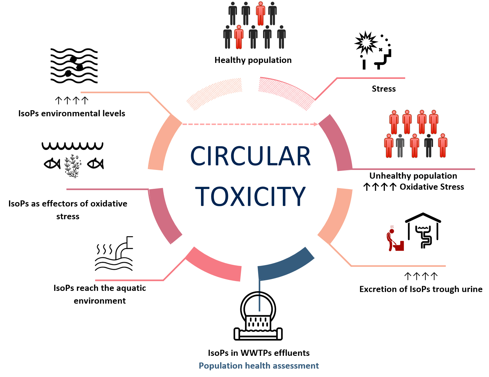 Schematic representation of the circular toxicity concept. Atlas of Science
