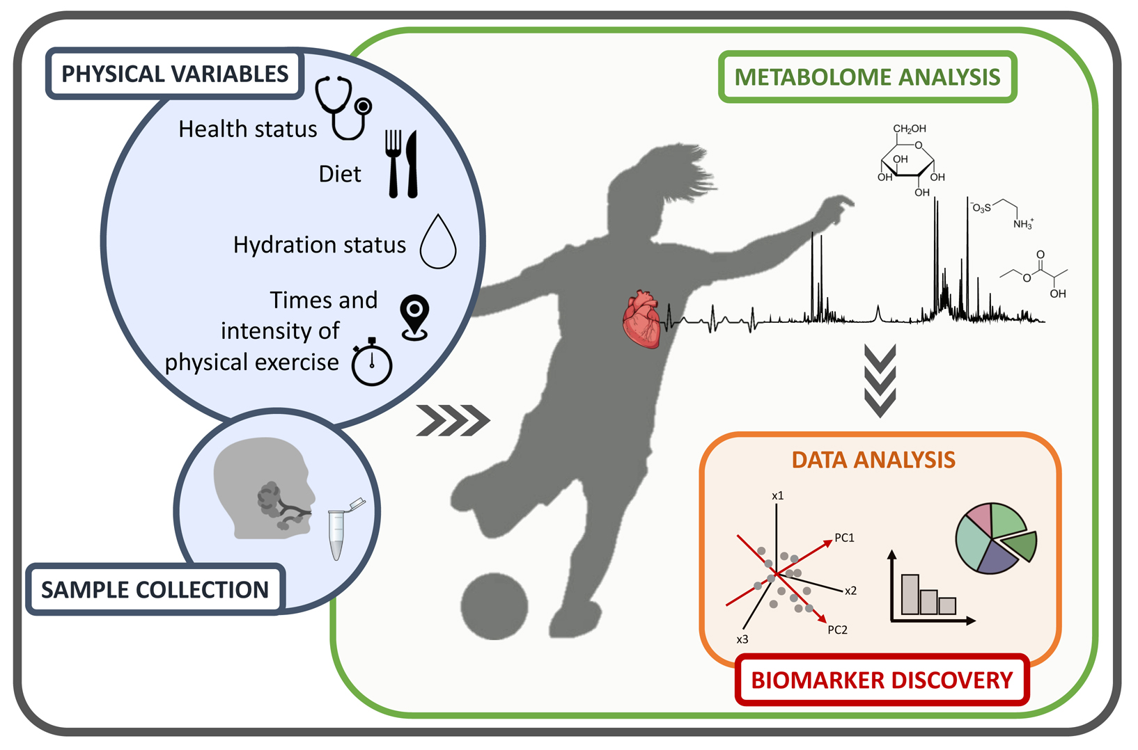 Atlas of Science. Soccer and metabolism.