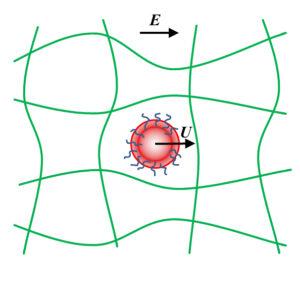 Atlas of Science. Soft-particle gel electrophoresis