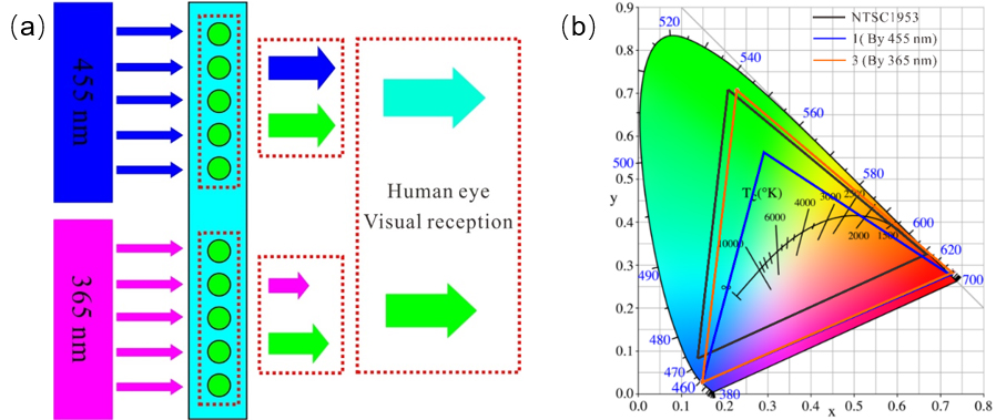 Atlas of Science. How to choose excitation wavelength for quantum-dot-converted light-emitting diodes?