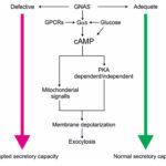 AoS. Novel genetics approach identifies GNAS gene.