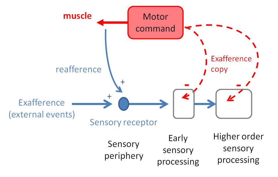 Atlas of Science. Predictive sensing.